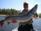 Fishing in Kenora Ontario