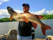 Muskie fishing Kenora ontario